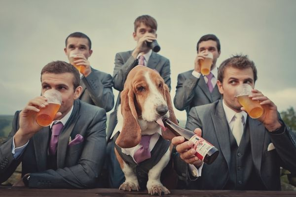 Groomsmen drinking beer with a dog - Picture by Lissa Alexandra Photography - maybe without dog