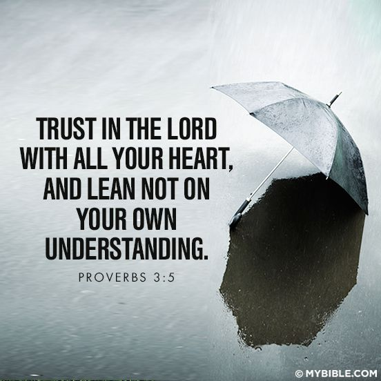 Trusting In The Lord Quotes: Trust In The Lord With All Your Heart..