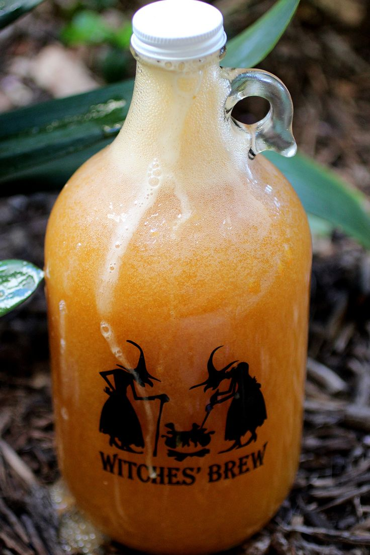 Calling all Harry Potter Fans!! Try this Pumpkin Juice Kombucha!  ~Cultured Food Life