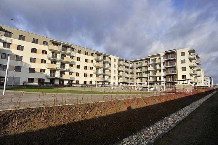 a zimy wciąż nie widać http://www.budimex-nieruchomosci.pl/warszawa-osiedle-pod-sloncem-2/