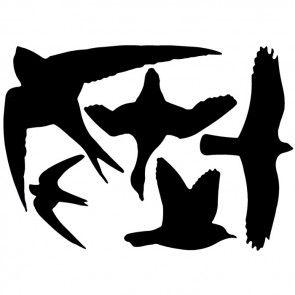 Vogel-silhouet raamstickers van Kooprijk