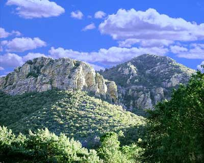 Ramsey Canyon Nature Preserve, Huachuca Mts, Sierra Vista AZ - we're hiking it this weekend!