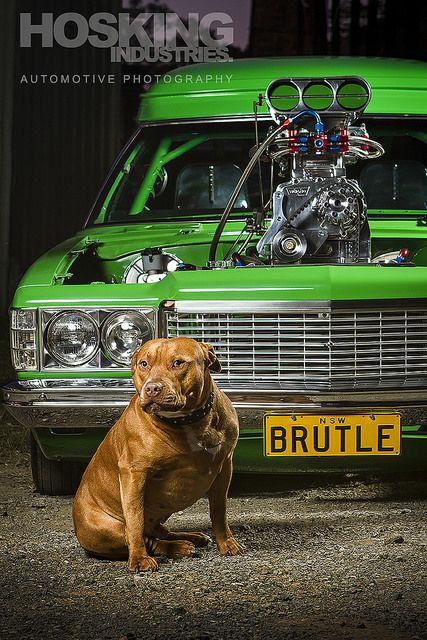 Al Bennett's 'BRUTLE' Holden Sandman Van | por HoskingIndustries