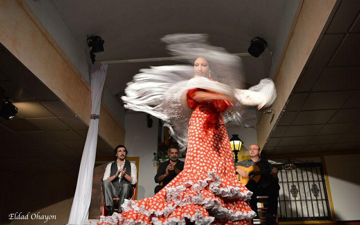 Olla! Flamenco in Seville @Portfoliobox
