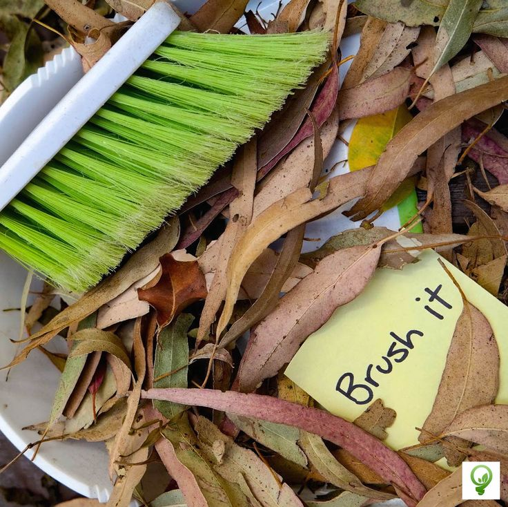 Eco Tip #27: Brush it Use brooms, brushes and vacuum cleaners to remove dirt before using microfiber mops, squeegees and steam cleaners. These all reduce water use.