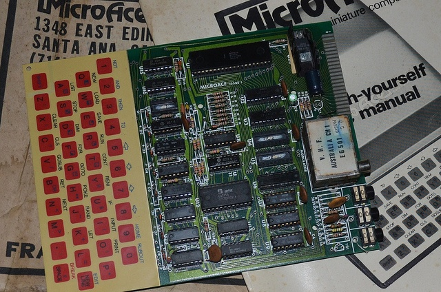I built one of these back in about middle of 1992 and this was my very first computer:- Microace Z80 Computer Board (1981).