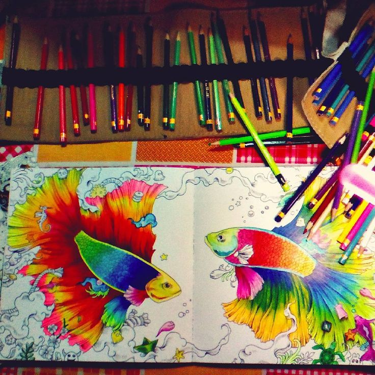 1000 Images About Animorphia Coloring Book Completed