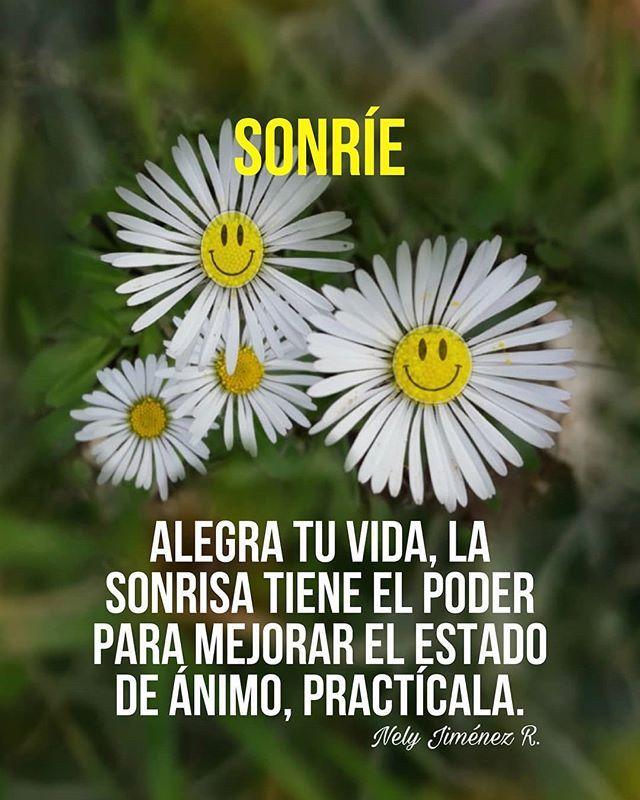 La Imagen Puede Contener Flor Planta Texto Naturaleza Y Exterior