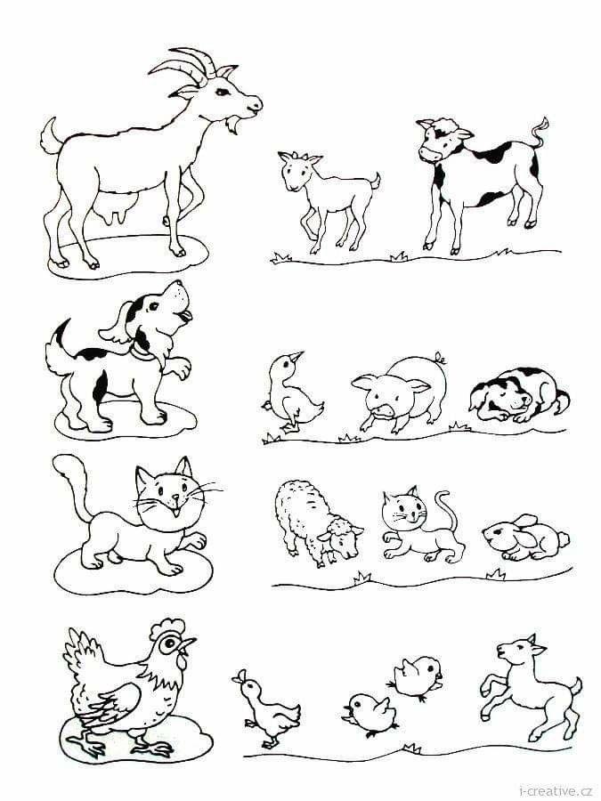 картинки задания по теме домашние животные и их детеныши бич
