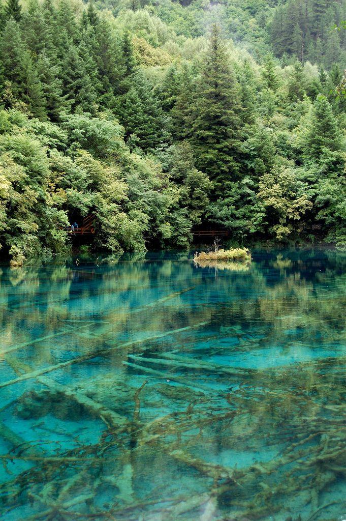 Mineral lakes (九寨溝),Sichuan province, Jiuzhaigou Valley, China