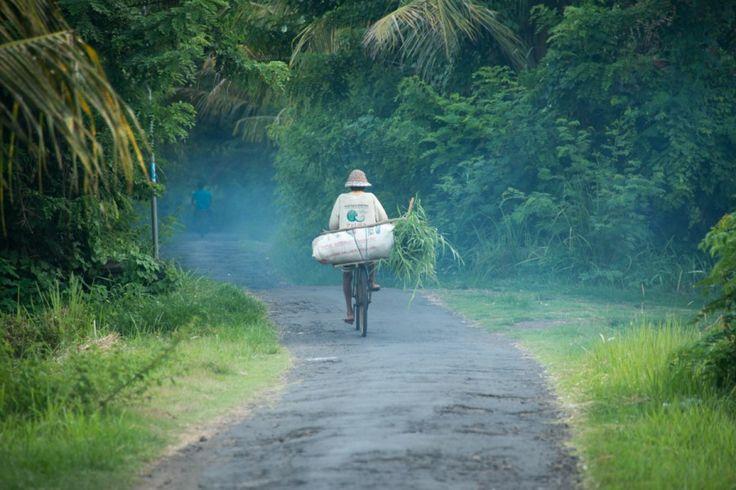 Bali Feeling captured by David Metcalf