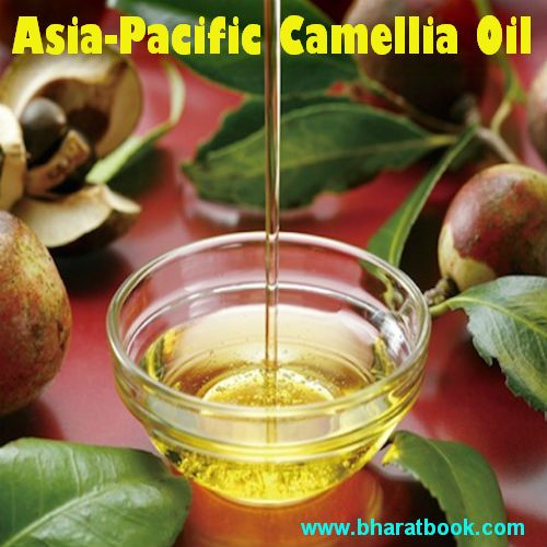 Camellia Oilis an edible, pale amber-green fixed (nonvolatile) oil with a sweet, herbal aroma. It is cold-pressed mainly from the seeds of Camellia oleifera.