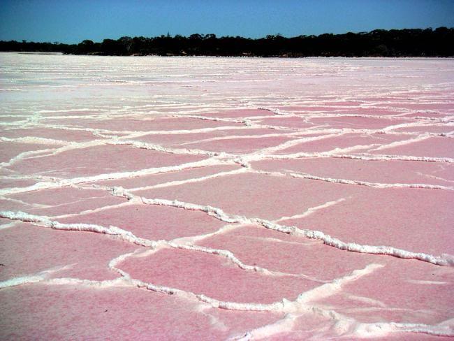 Pink lake at Murray Sunset National Park, Victoria