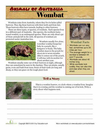 Worksheets: Wombat