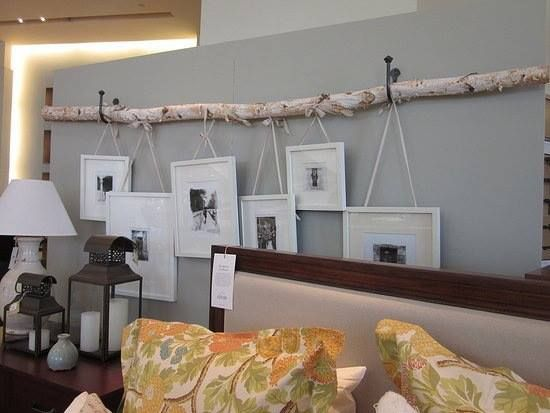 Hanging photo frames from birch branch