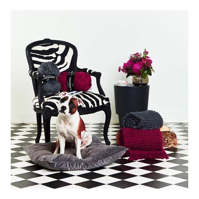 Nos écharpes GROG ont été tricotées à la main avec la laine de la Maison Plassard, fabricant depuis 1879 à Varennes-Sous-Dun. Une jolie façon d'allier mode & savoir-faire! Ne tardez pas, il n'y en a déjà plus que 90!  @laines.plassard  #maisongaja #surprise #frenchtouch #fashion #newin #knit #handmade #madeinfrance #fabriqueaveccoeur