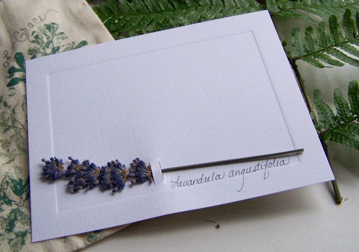 Cut two small slits in heavy note card stock and slip a fresh lavender stem through it. Place the card in a flower press until dry. Perfect for a quick thank you note or  fragrant thinking of you!