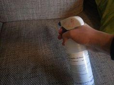 Katzenurin entfernen - Sofa