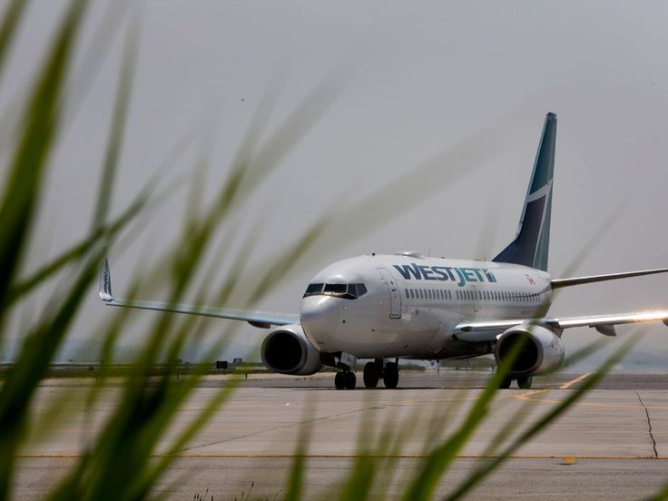 Westjet employees are leading a drive to join CUPE