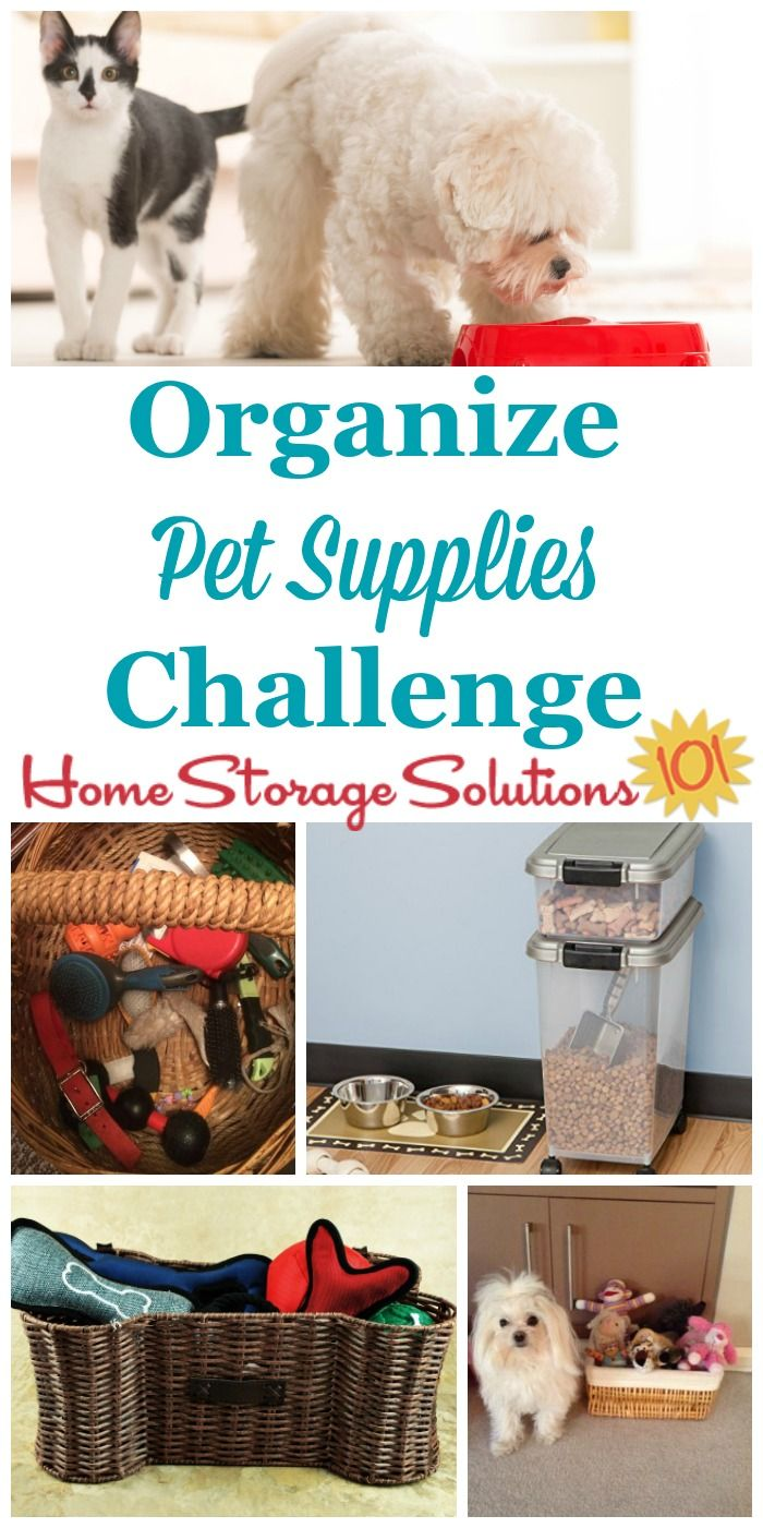 How To Organize Pet Supplies Food Animals Pet Food Storage Pets