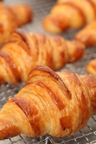 Croissant making log with lots of tips. Learn form our mistakes and triumphs!