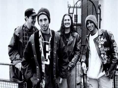 Rage Against The Machine Playlist - Ultimate Mix