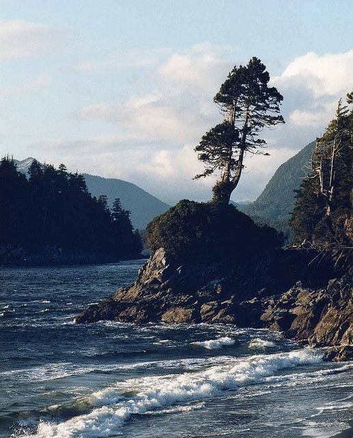 Tofino,Vancouver Island, BC One of thee most beautiful places i've ever seen!