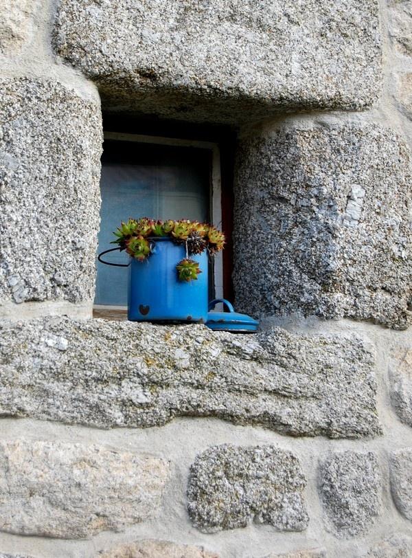 Pot bleu Bugeac: Bleu Bugeac, Pots Bleu