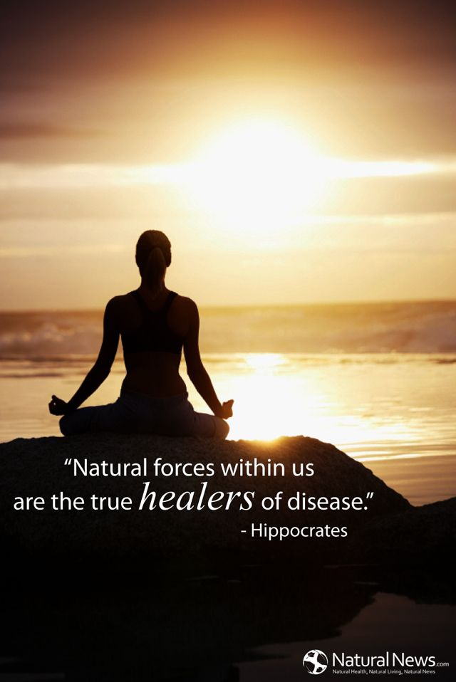 """""""Natural forces within us are the true healers of disease."""" - Hippocrates"""