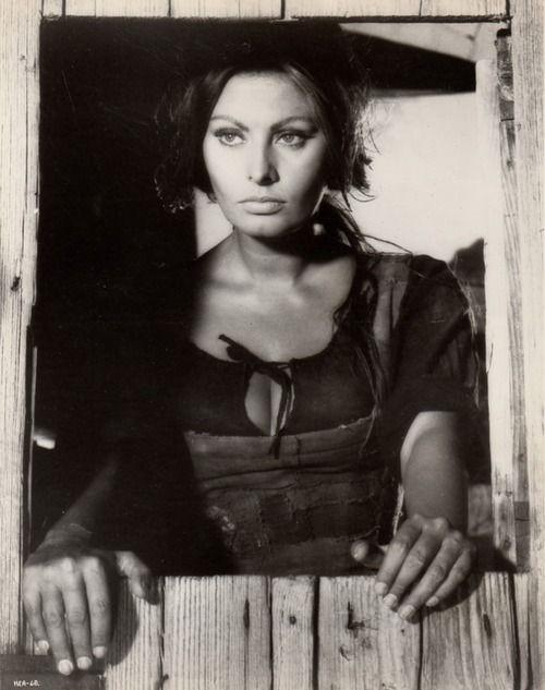 272 best images about Sophia Loren on Pinterest | Italian ...