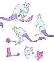 Best 25 mew and mewtwo ideas on pinterest pokemon mewtwo mewtwo evolution and the pokemon - Evolution mew ...