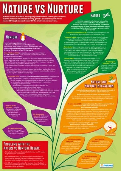 Nature vs Nurture Psychology Poster