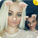 Download Face Swap Photo Filters Stickers V2.3.0:   This is so cute!!      Here we provide Face Swap Photo Filters Stickers V 2.3.0 for Android 4.1++ Do you Want add cute doggy filters in your selfie? Want to put lovely cat ear on your face? Want to make your photo funny and creative? Try our Face Photo Editor – the best Photo Editor New...  #Apps #androidgame #CollectionApps, #Inc.  #Photography http://apkbot.com/apps/face-swap-photo-filters-stickers-v2-3-0.html