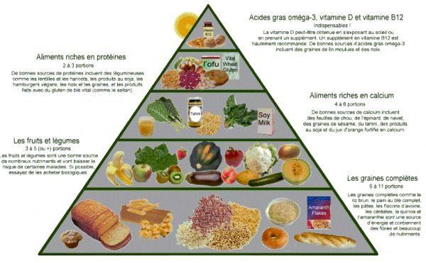 Comment devenir végétarien - ToutComment