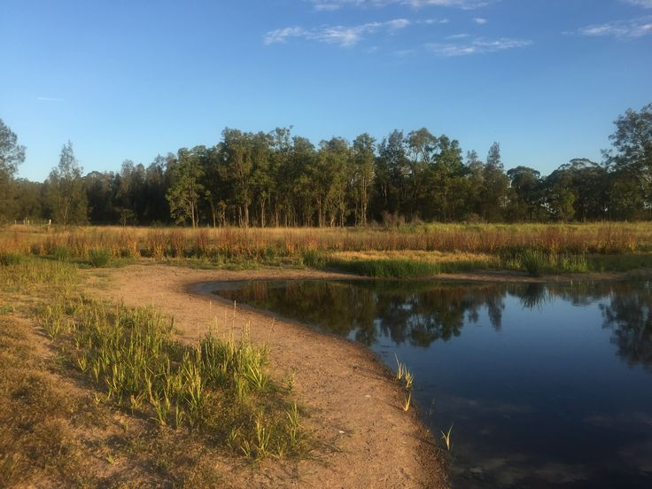 Providence Hunter Valley... the front dam