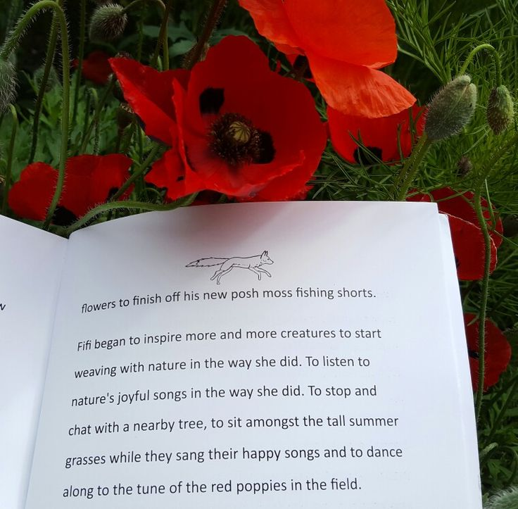 Star of my first book, How the fox got her gloves, is Fifi the fox. She deals with a life changing event in an uplifting way. On this page she is teaching friends to dance along to the tune of the red poppies, because Fifi understands that nature is alive with music and song 🎶💕🐾