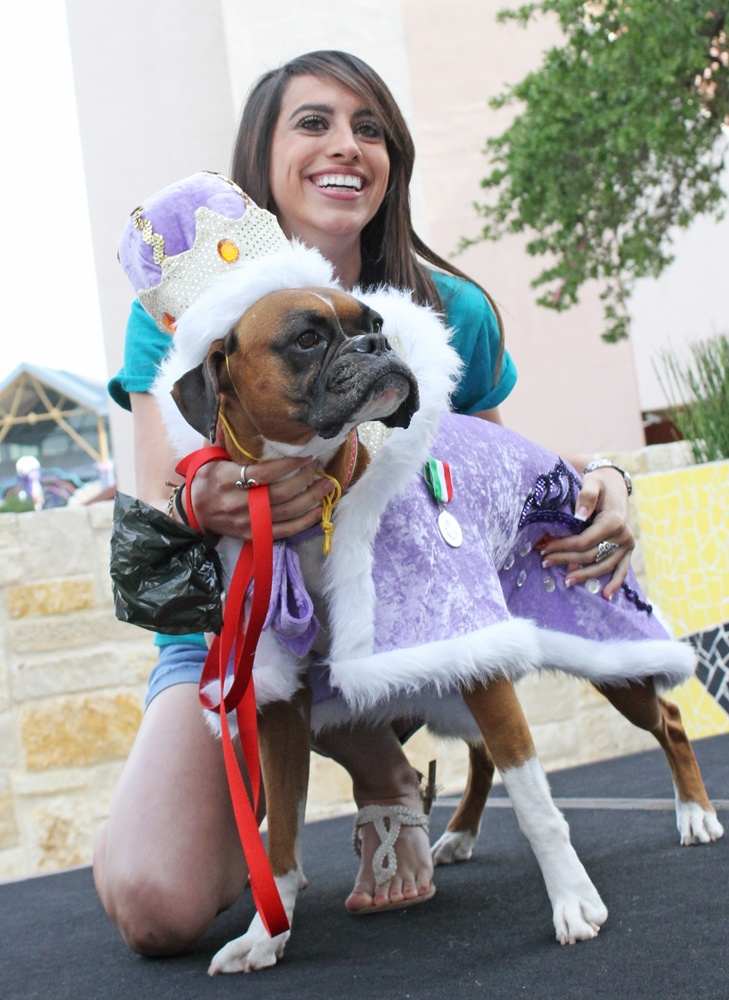 10 best el rey fido 2010 2012 images on pinterest dog for Best dog boarding dc