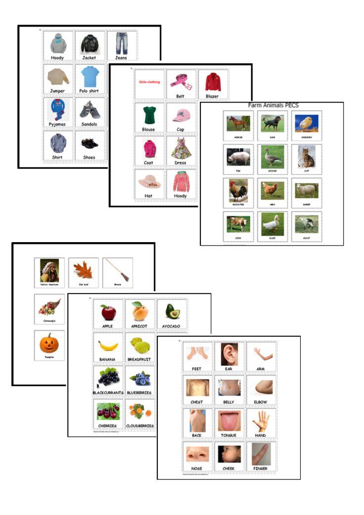 227 Autism & Special Needs Communication Cards, PECS.