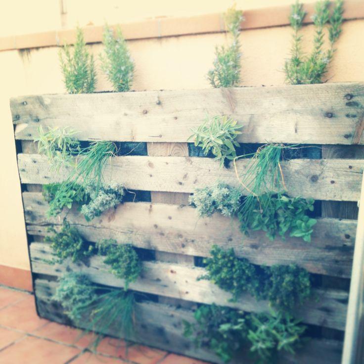 jardn vertical de plantas aromticas hecho por nosotros jard vertical de plantes aromtiques fet per