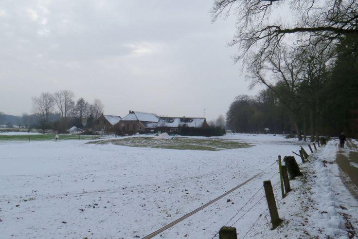 2015-01-25 Boerderij in winterlandschap tussen Hackfort en Wichmond