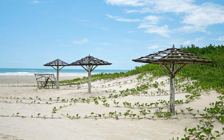 Beach in Senegal: http://www.apollo.se/resor/afrika/senegal