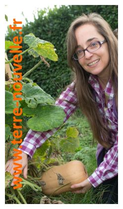 Culture de la courge butternut : comment je fais