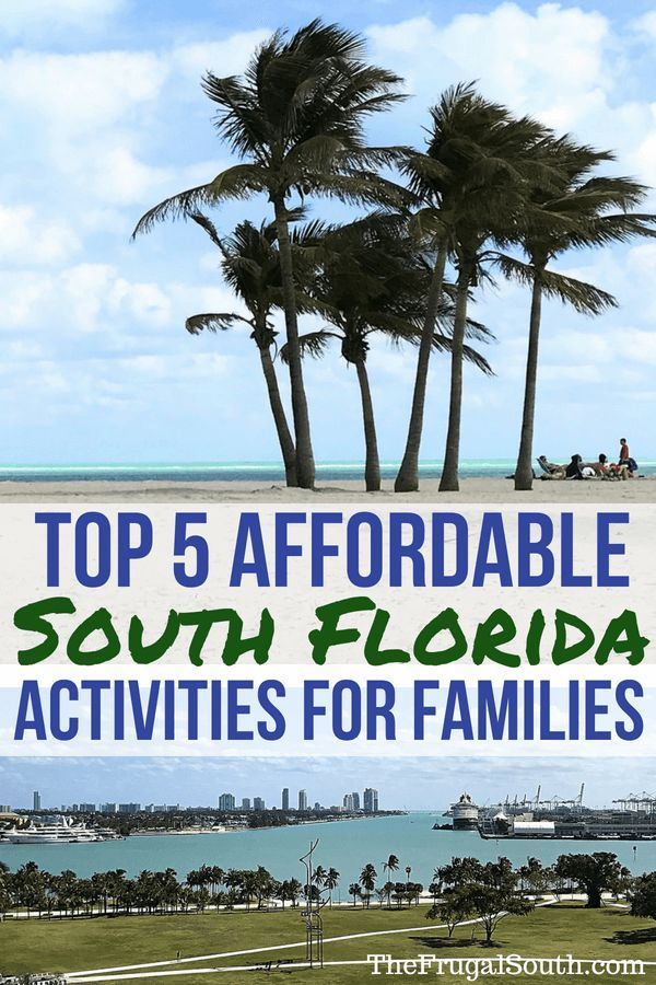 Five Affordable South Florida Activities For Families Florida Activities Florida Vacation Packages Budget Friendly Travel