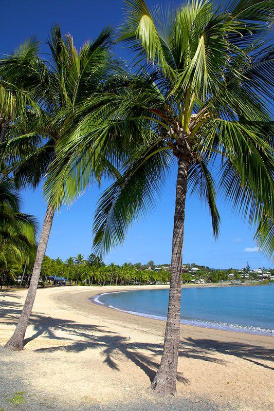 Tropical beach, Airlie Beach, Queensland, Australia