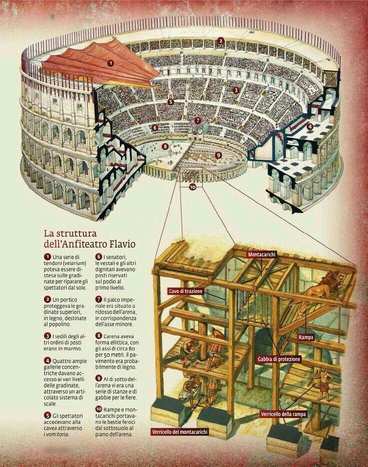 - La estructura del Anfiteatro Flavio ./tcc/