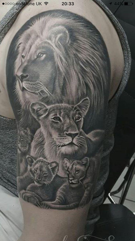 тату семья львов фото национальный