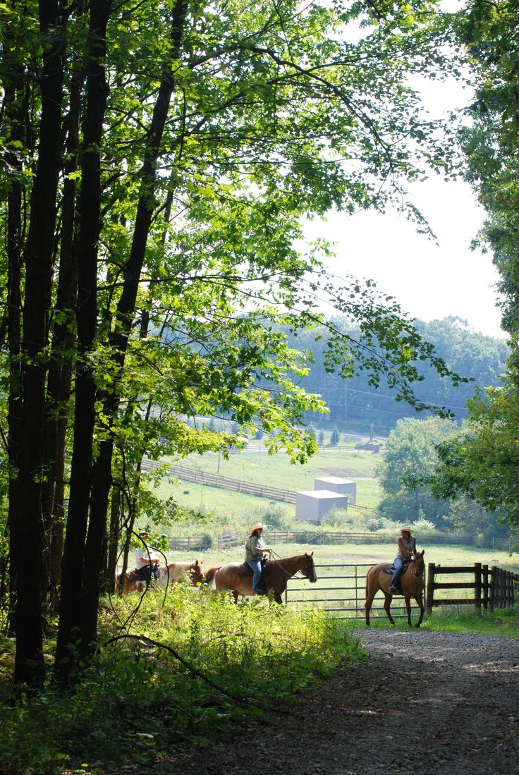 Nemacolin Woodlands Resort's Wildlife Academy Backwoods Trail Rides