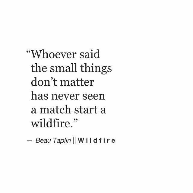 """""""Whoever said the small things don't matter has never seen a match start a wildfire."""""""