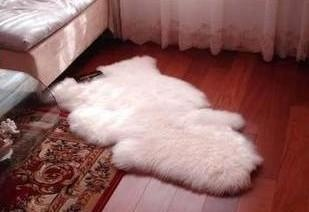 "New BIG White lvory single pelt sheepskin rug 50"" x 29"""