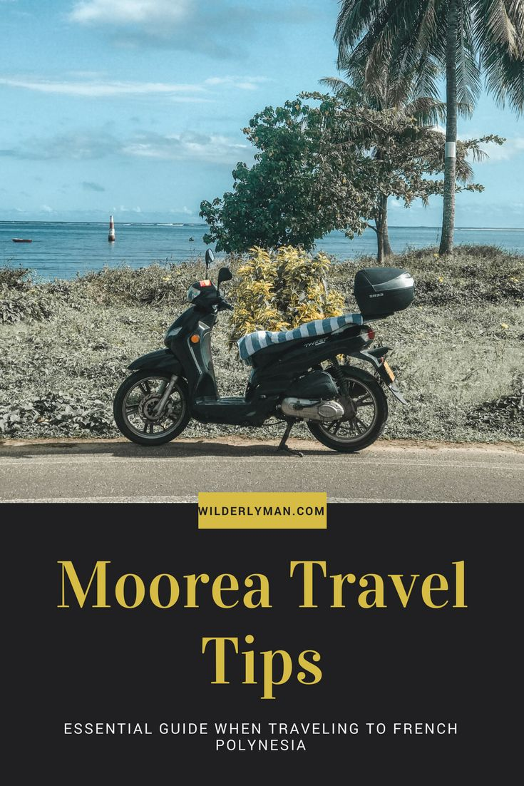 moorea travel tips - things to know before visiting French Polynesia